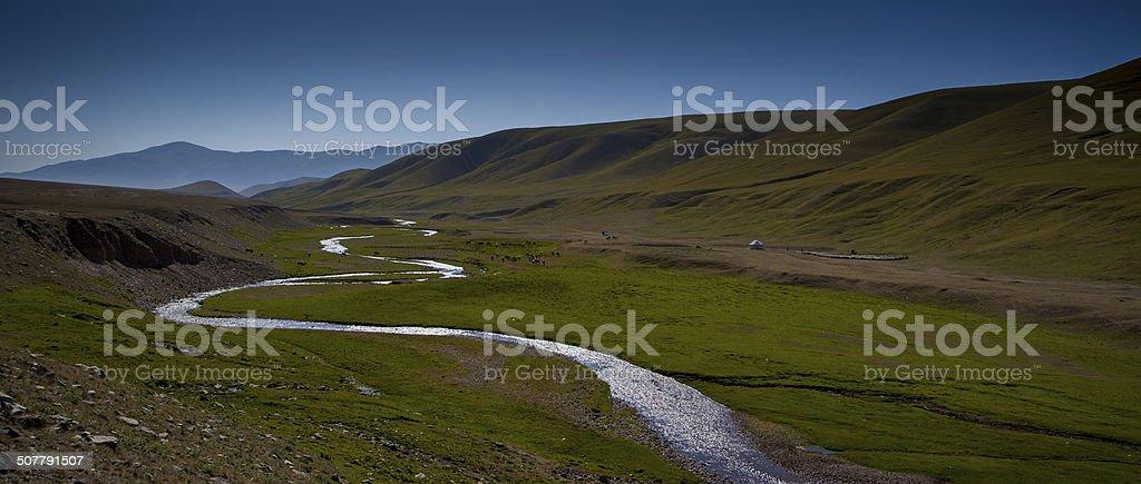 pasture nomads stock photo