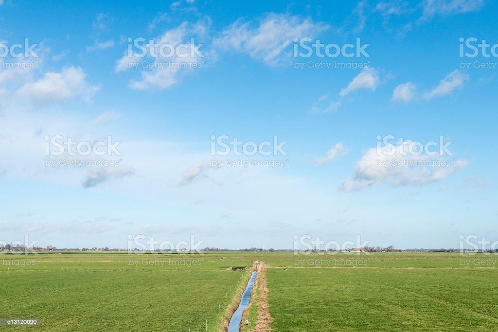 Pasture. stock photo