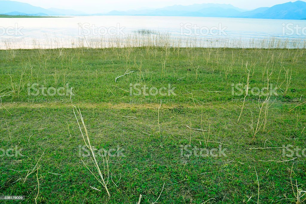 Pastures after flood royalty-free stock photo