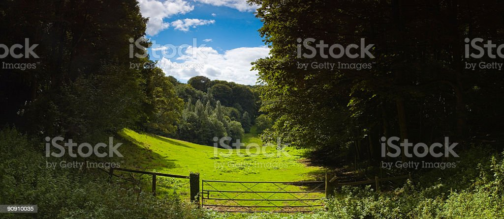 Pastures new royalty-free stock photo