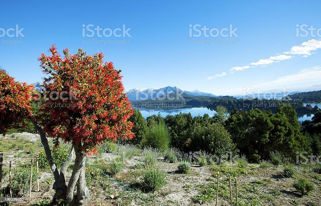 Patagonia Argentina View royalty-free stock photo