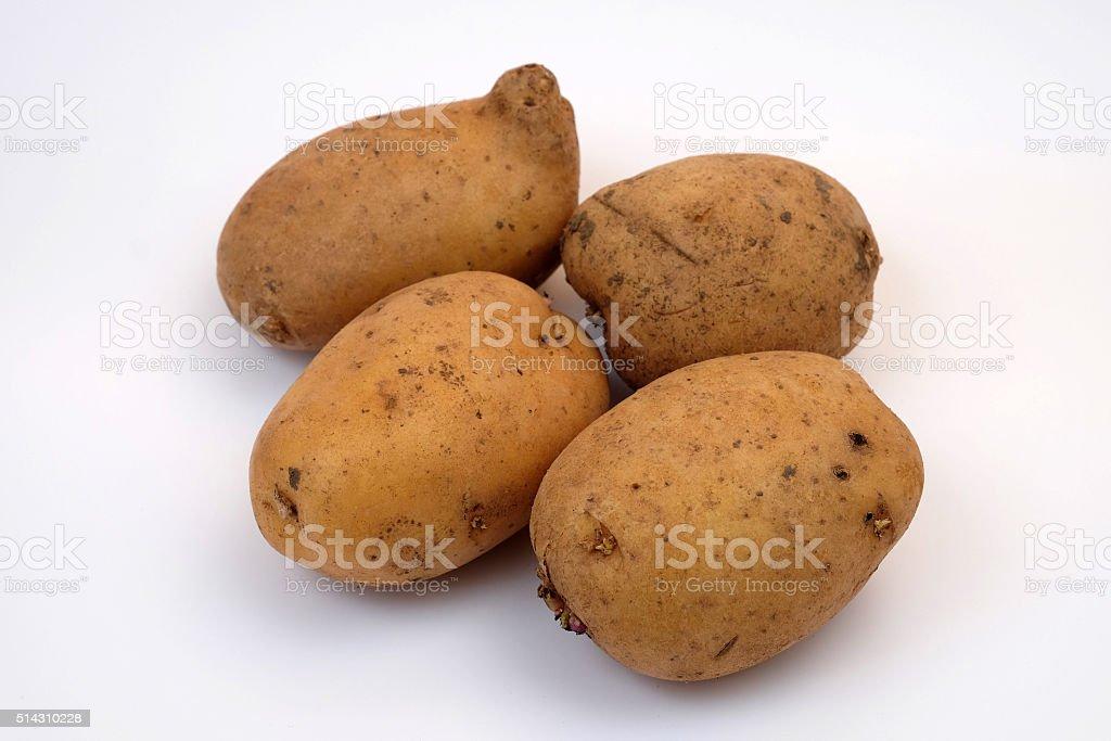 patato stock photo
