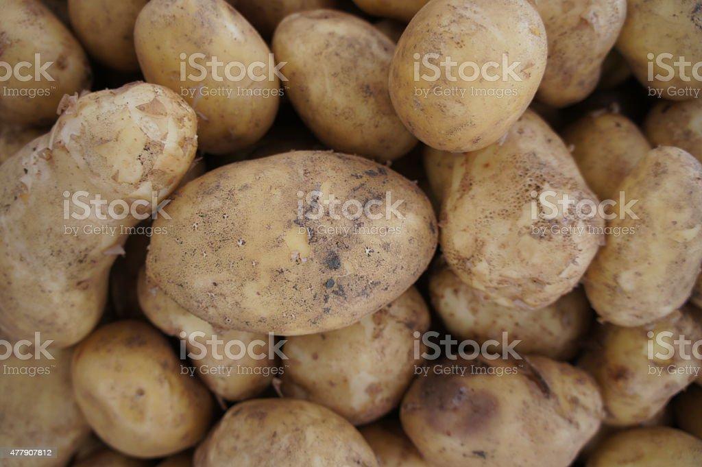 Patatoes stock photo