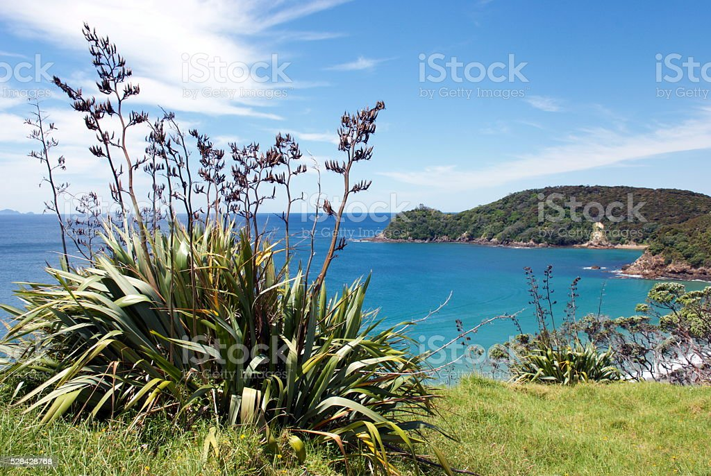 Pataua Beach, Whangarei District, Northland, New Zealand stock photo