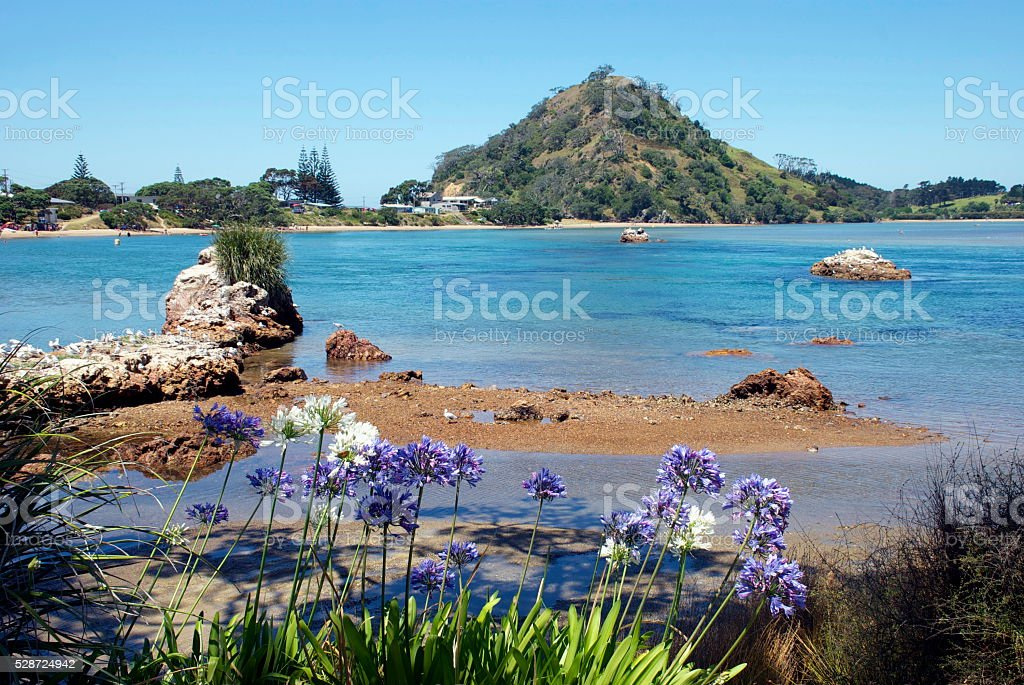 Pataua Estuary, Whangarei District, Northland, New Zealand stock photo