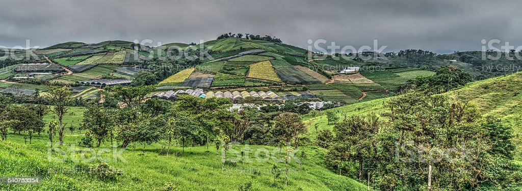 Patched landscape stock photo