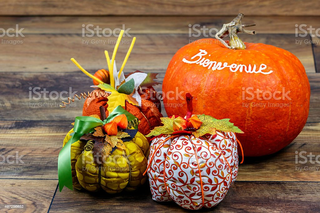 Patchwork Pumpkins stock photo
