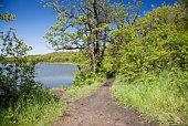 Path along the lake