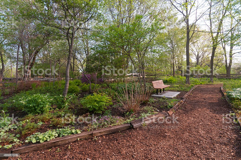 Path and bench in garden stock photo