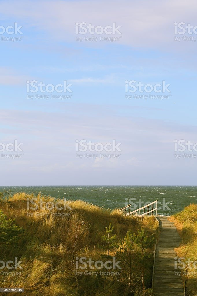 Path and sandy dunes at Tylösand, Halmstad Sweden stock photo
