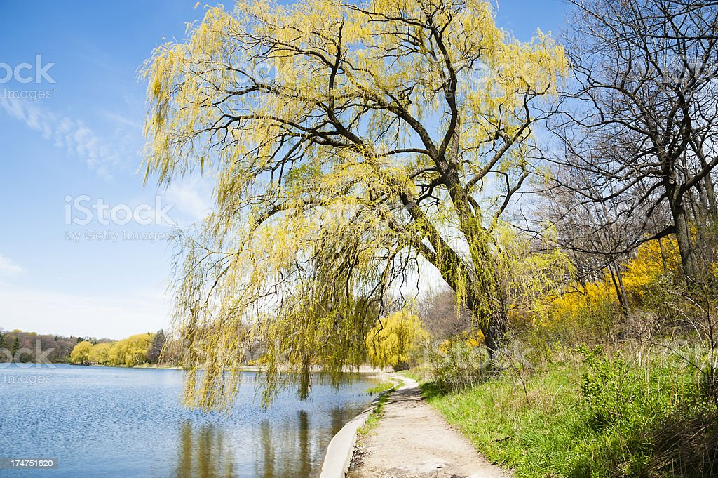 Path Around Grenadier Pond In High Park royalty-free stock photo