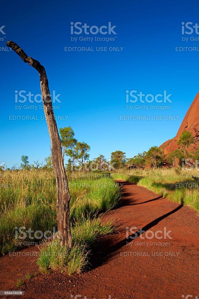 Path Around Uluru stock photo