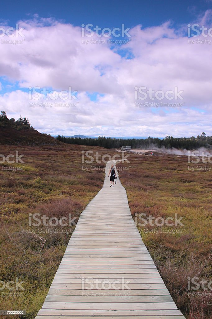 Path at Craters of the Moon stock photo