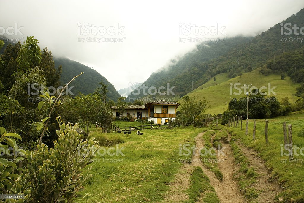 Path by Cocora Valley royalty-free stock photo