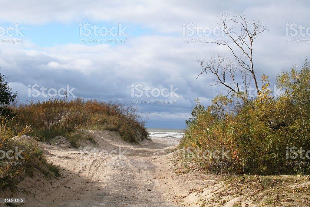 Path dunes. stock photo