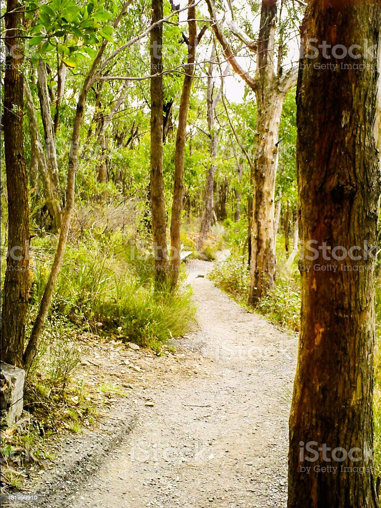 Path From Mt Lofty To Cleland Wildlife Park stock photo