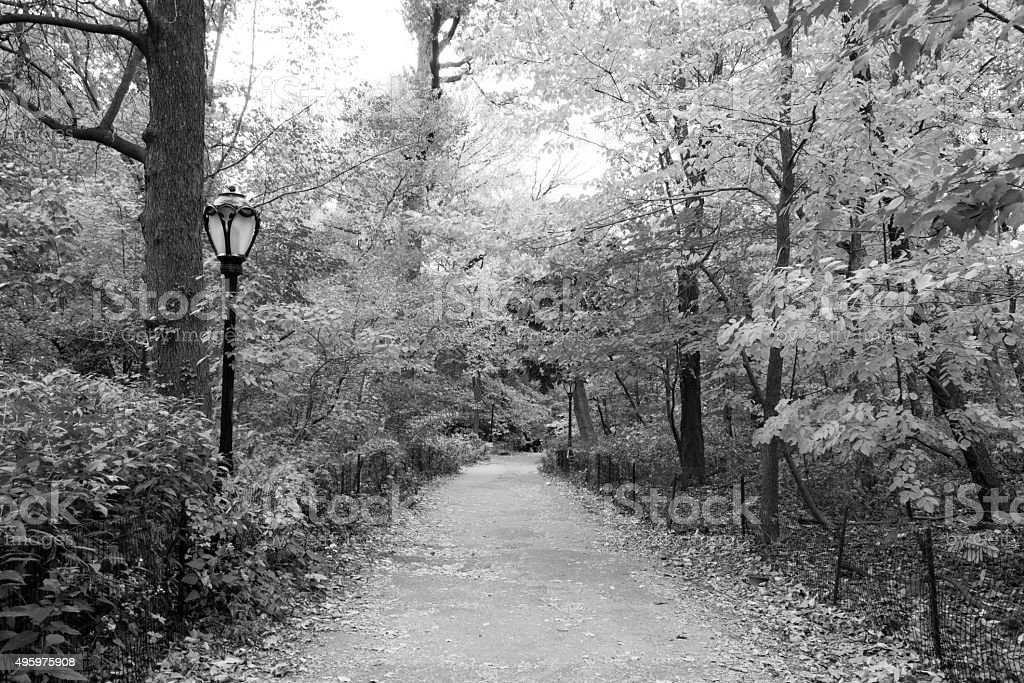 Path in black and white stock photo