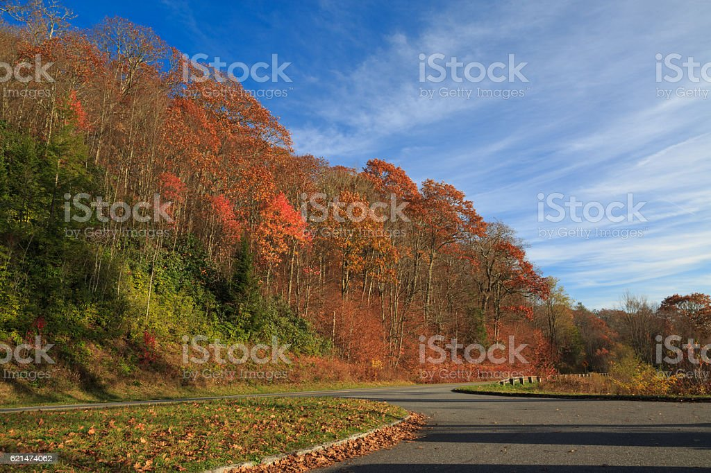 Path in great smokey mountains. stock photo
