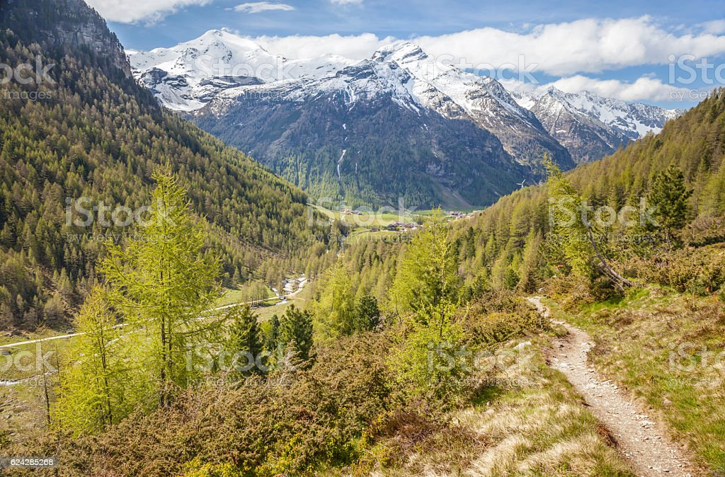 Path in mountain valley in spring time stock photo