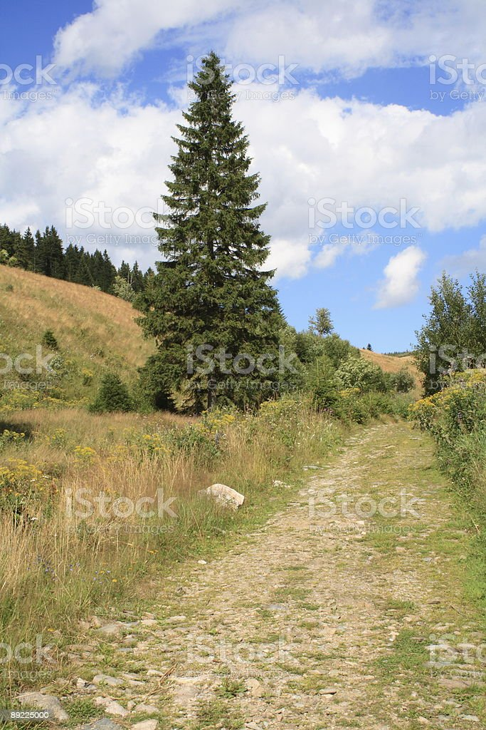 Path in mountains royalty-free stock photo