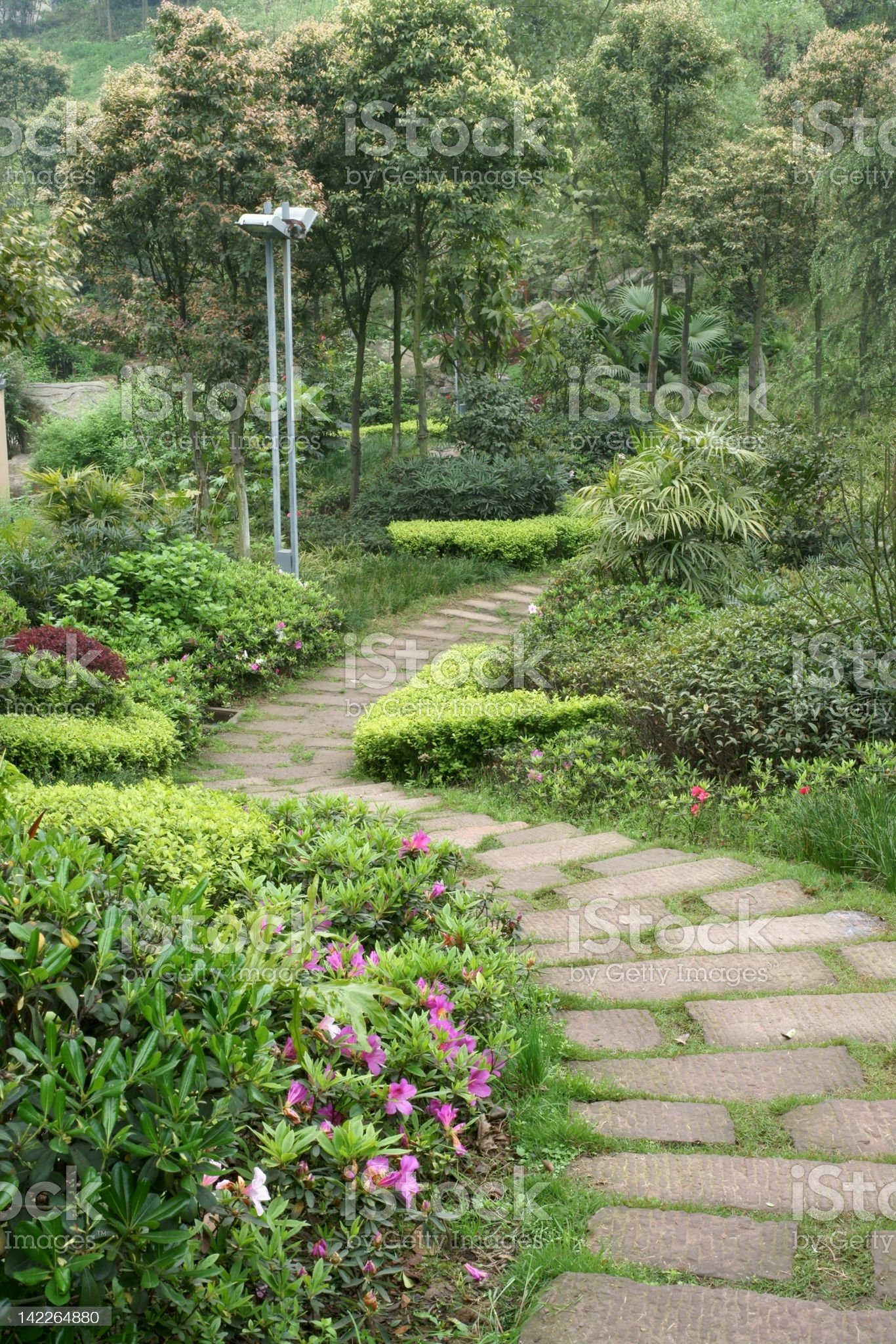 Path in park royalty-free stock photo