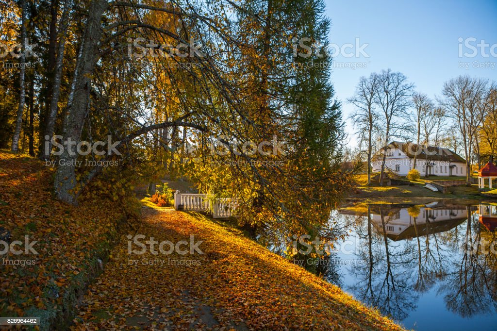 Path in the autumn park around a pond. October fall time. stock photo