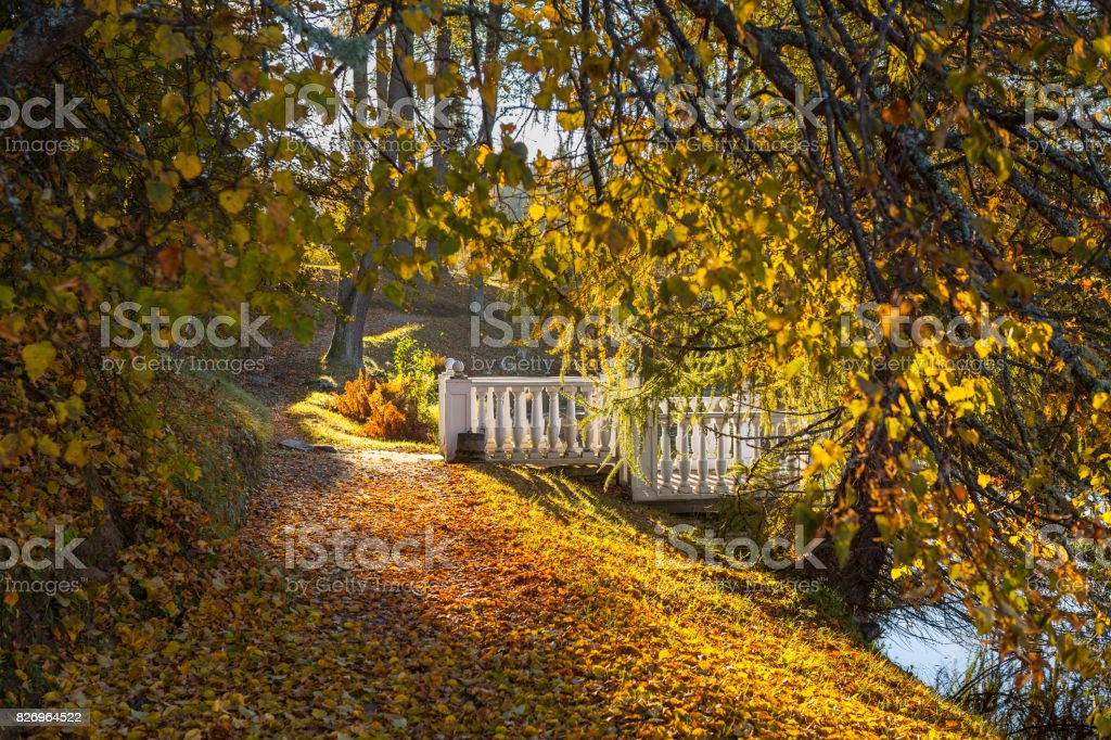 Path in the autumn park around a pond with a bridge. October fall time. stock photo