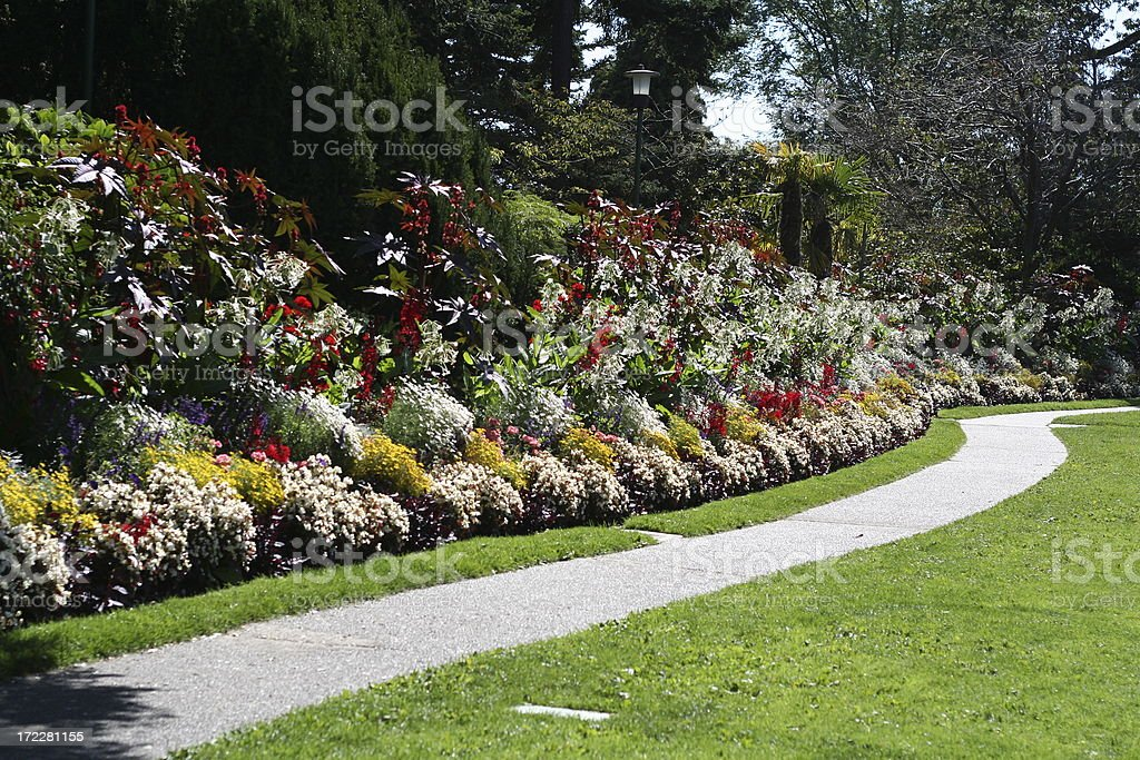 Path in the Garden royalty-free stock photo