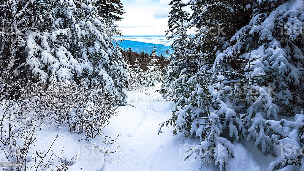 Path in the mountain cover by fresh powder snow royalty-free stock photo