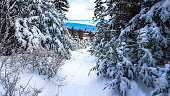 Path in the mountain cover by fresh powder snow