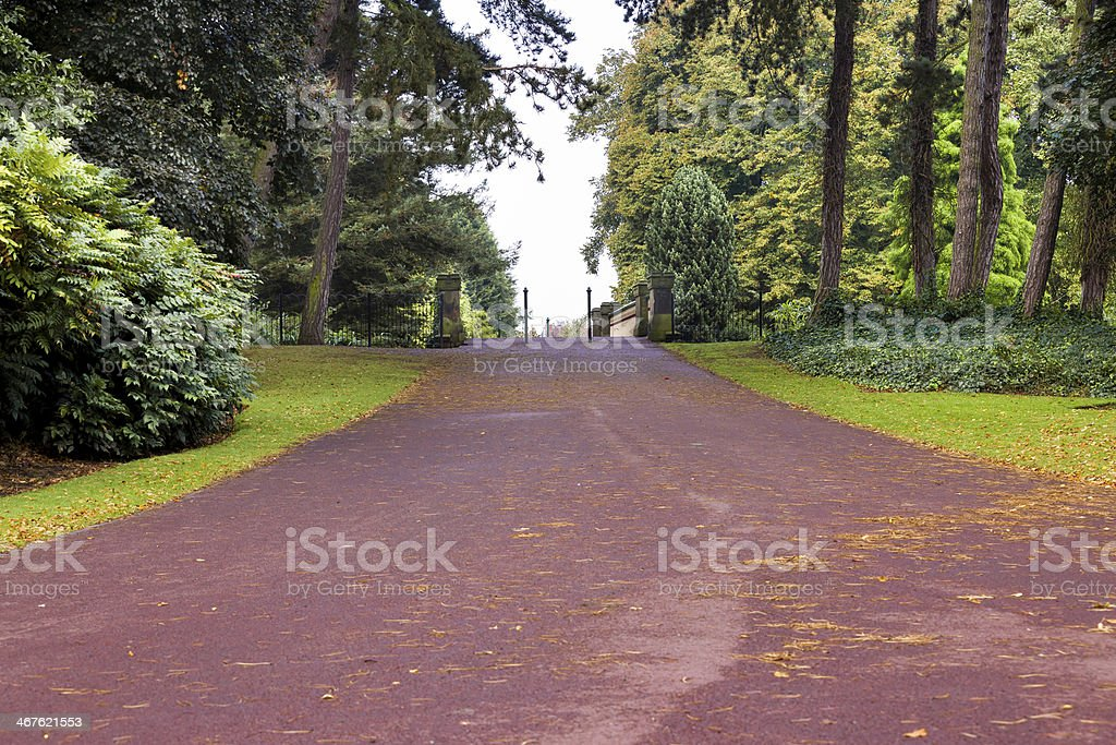 Path in the park stock photo