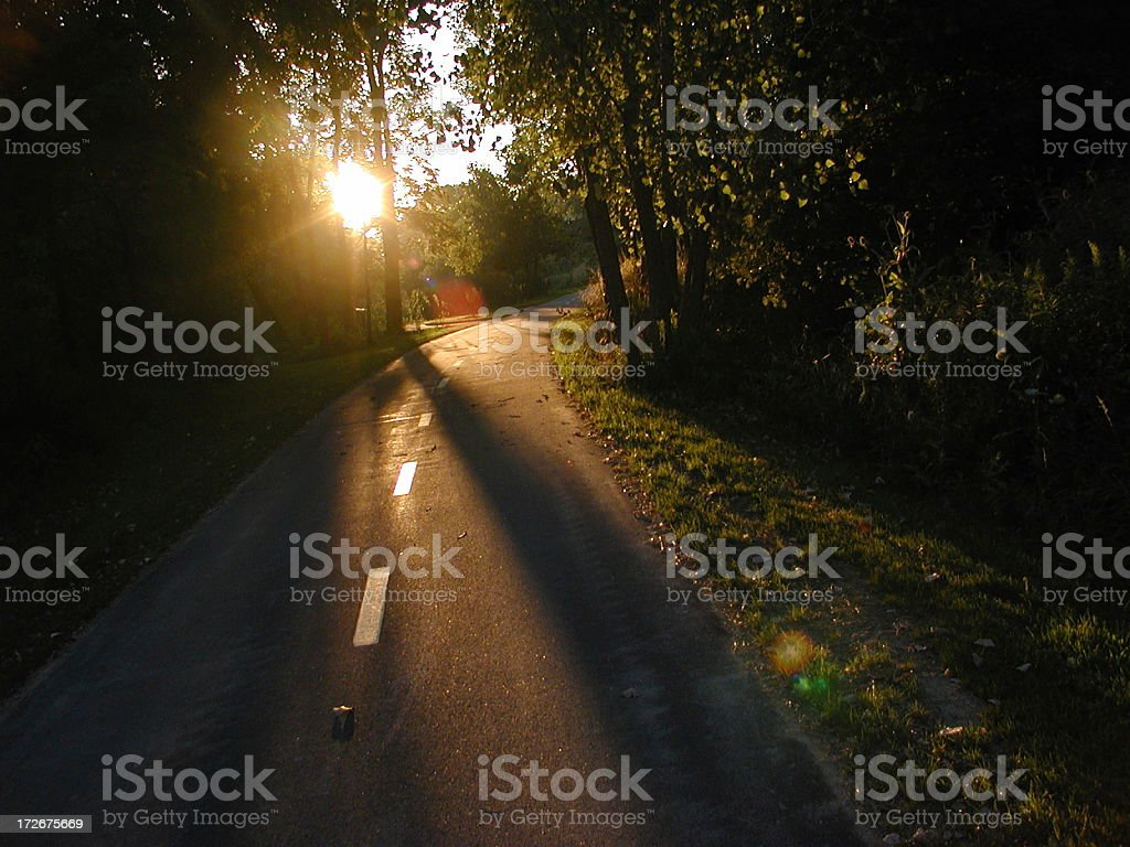 Path in woods at sunset royalty-free stock photo