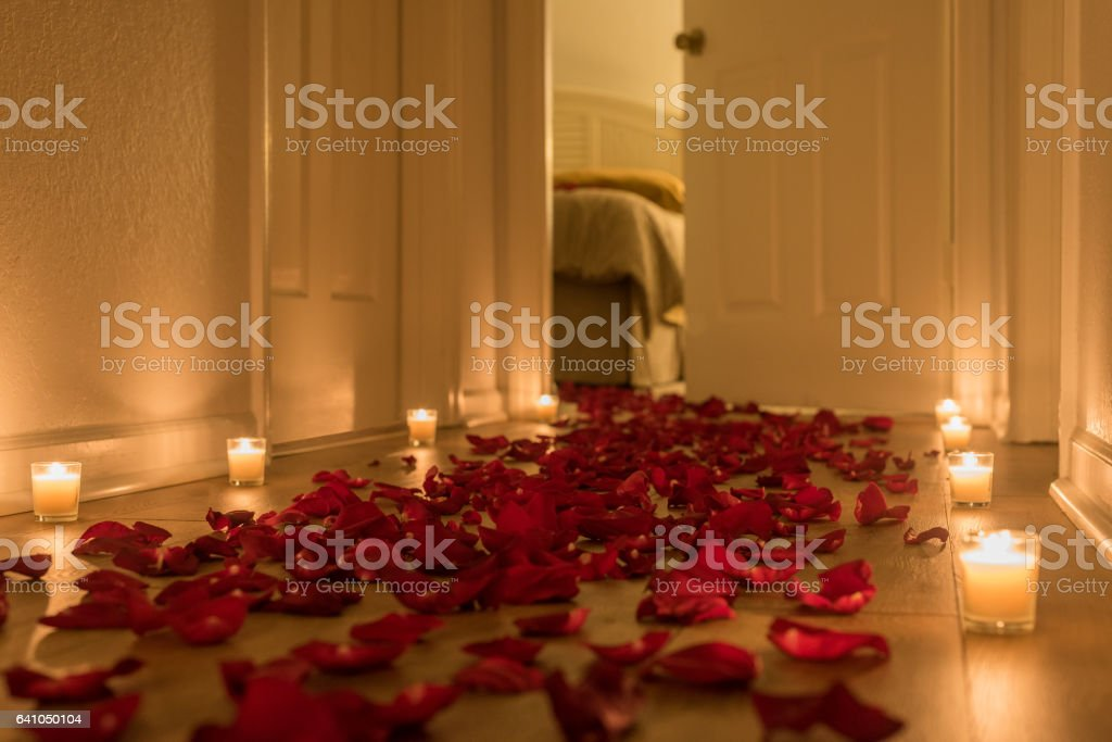 A path of red rose petals toward a special place stock photo