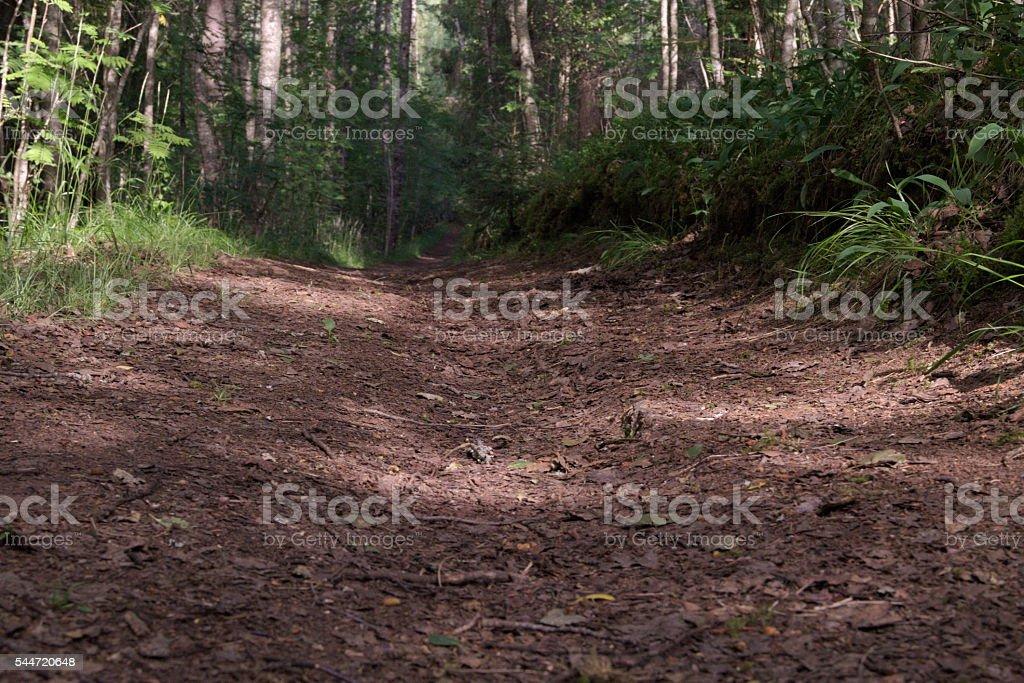 Path stock photo