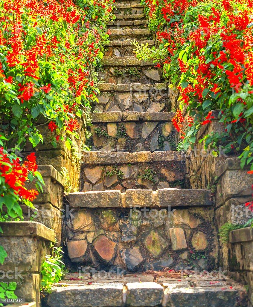 Path stairs beautifully stock photo