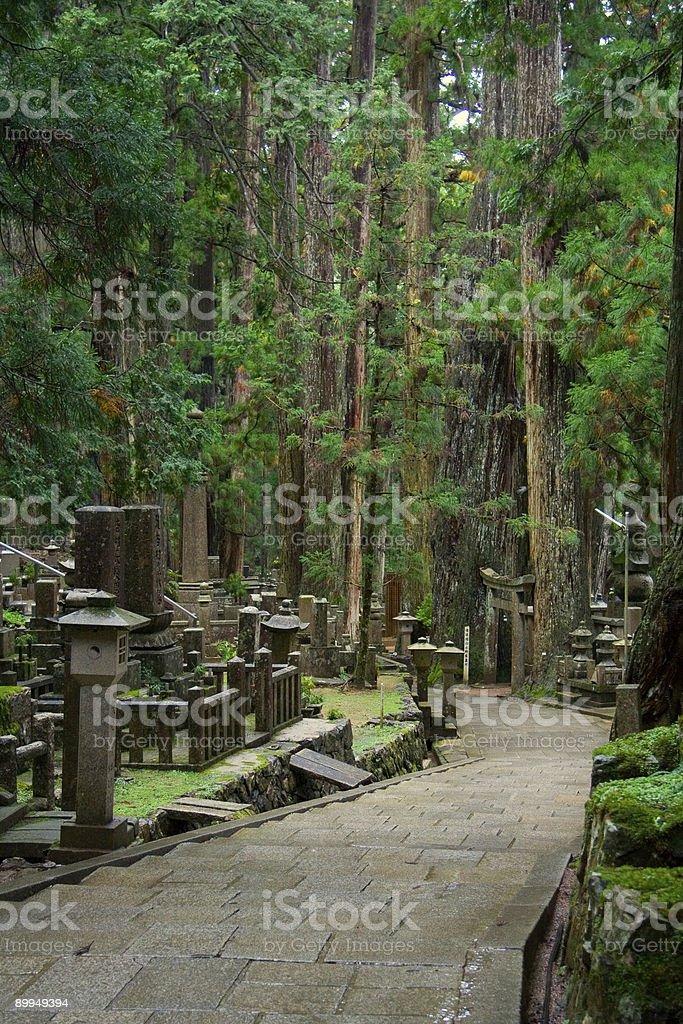Path through Okunoin Cemetery - Vertical stock photo