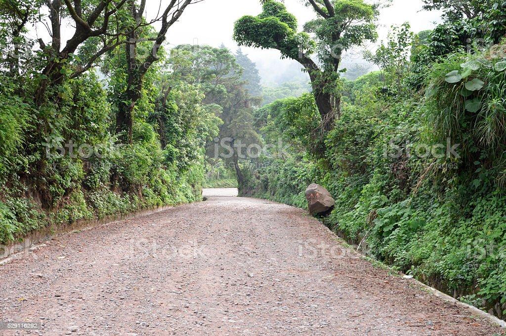 Path through the caffeinated community of Apaneca, El Salvador stock photo