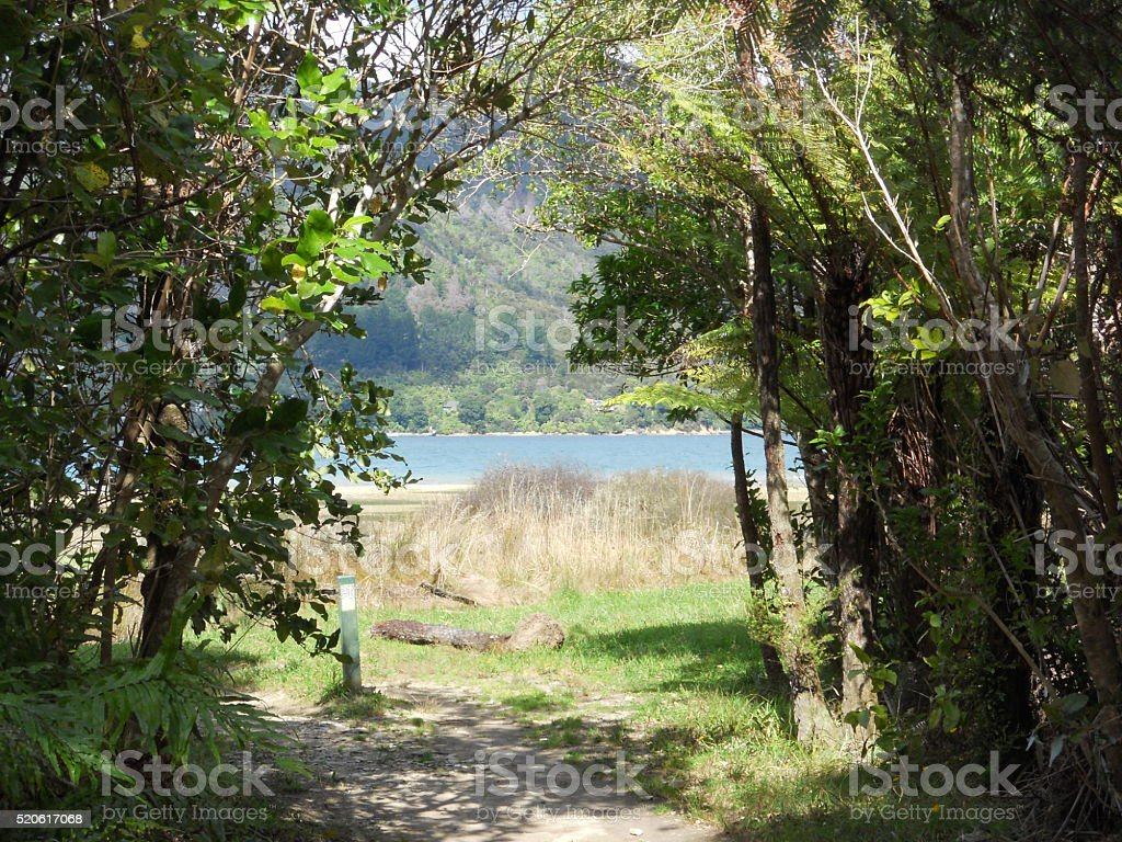 Path Through Trees Beside Water stock photo