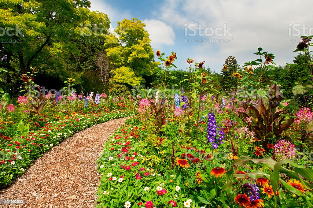 Path thru lush summer flower garden - IV stock photo