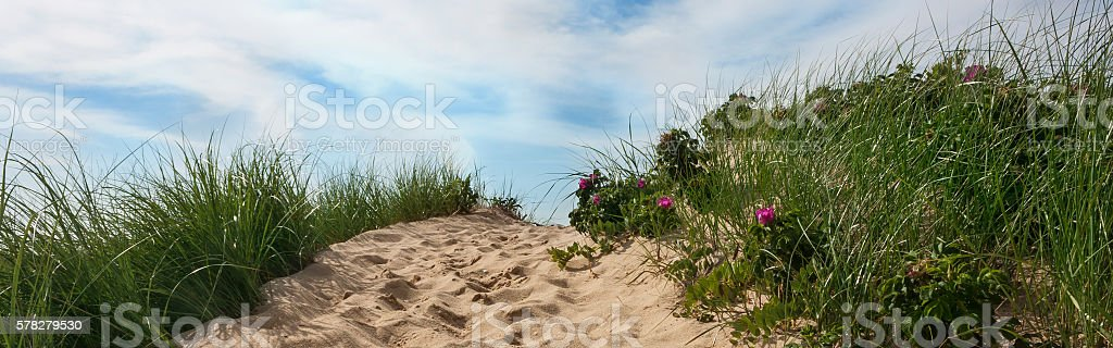 Path to beach Wellfleet Massachusetts on Cape Cod stock photo