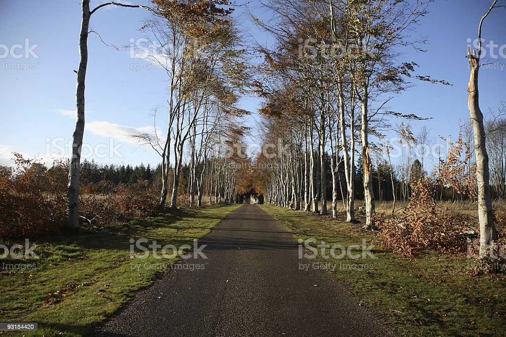 Path to Castle royalty-free stock photo