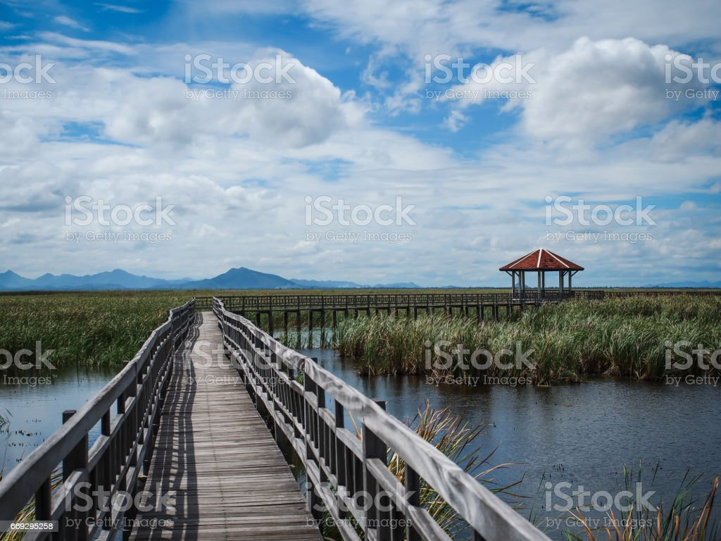 Path to nature, Khao Sam Roi Yot, Prachuap Khiri Khan, Thailand. stock photo