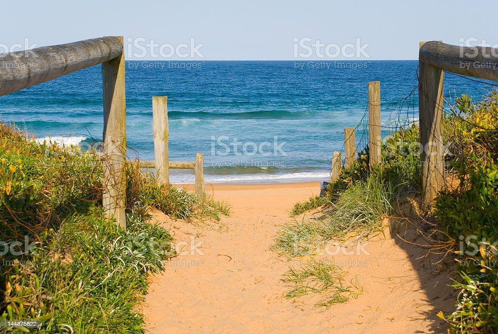 Path to Ocean Beach royalty-free stock photo