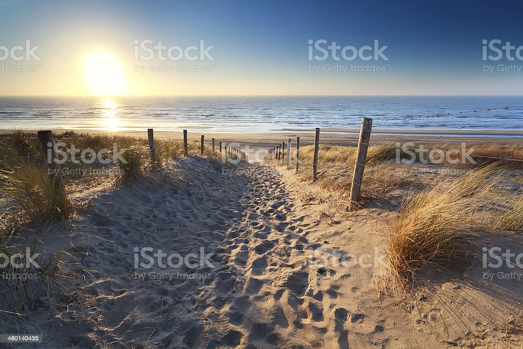 path to sand beach in North sea stock photo