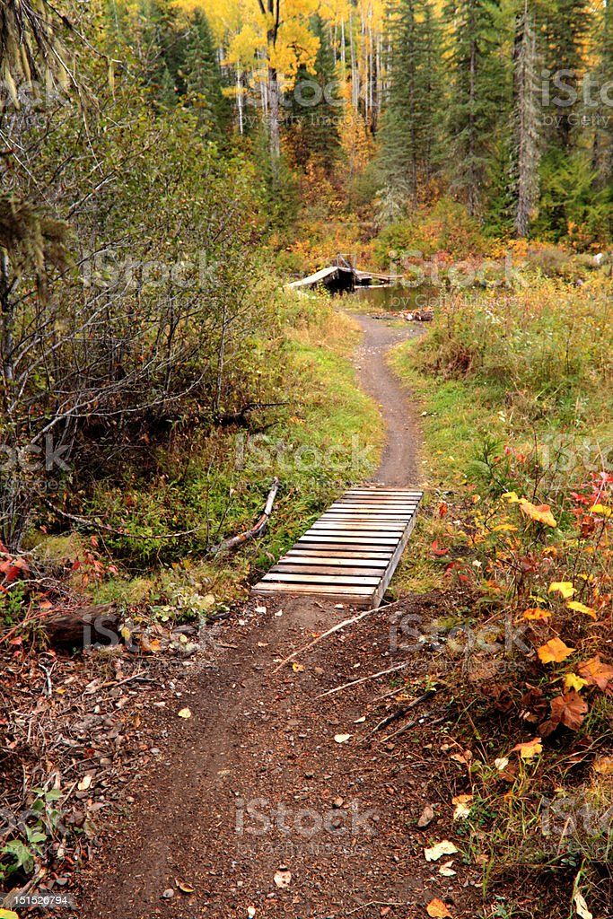 Path to somewhere royalty-free stock photo