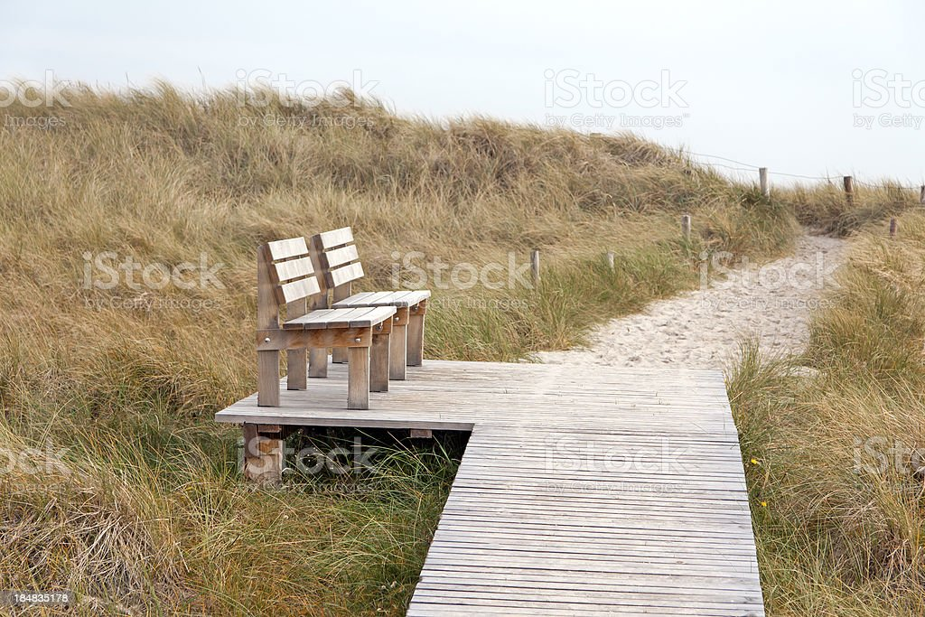 Path to the beach, Darsser Ort stock photo