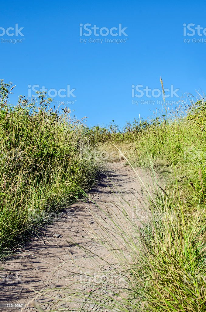 Path to the beach royalty-free stock photo