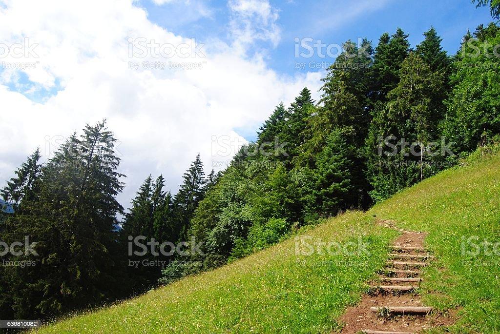 Path to the Harder Kulm summit in Interlaken stock photo