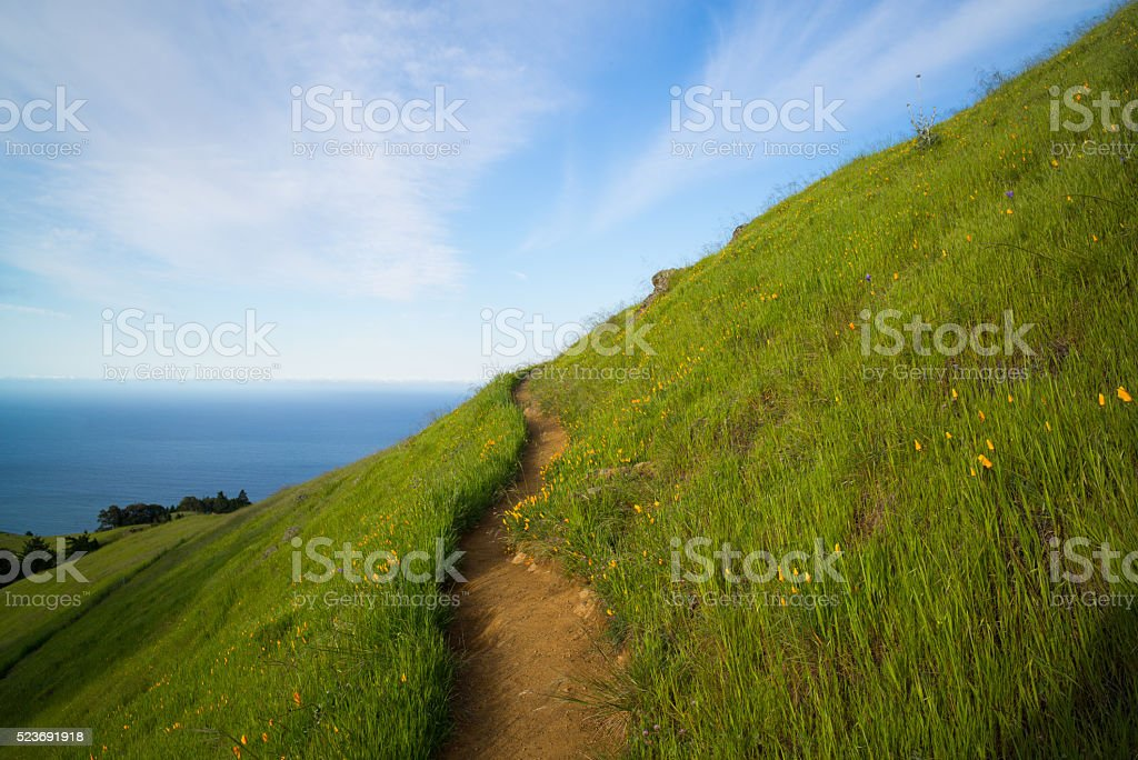 Path to the Pacific stock photo