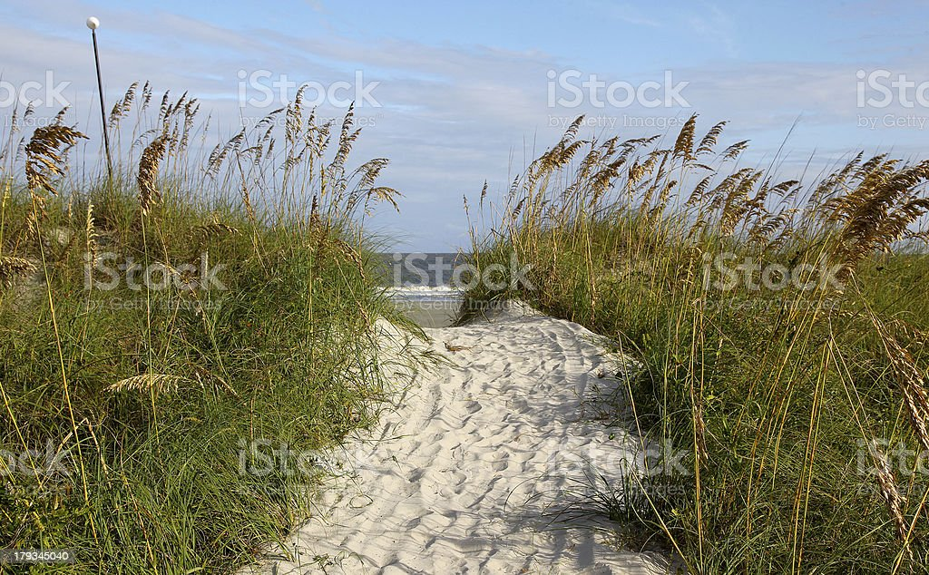 Path to the Sea royalty-free stock photo